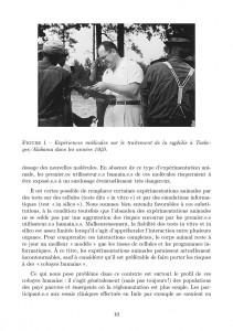Antispecisme-page-010